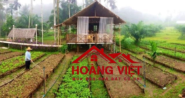 Lựa chọn cho mình một không gian sống mới gần nông trang xanh Củ Chi